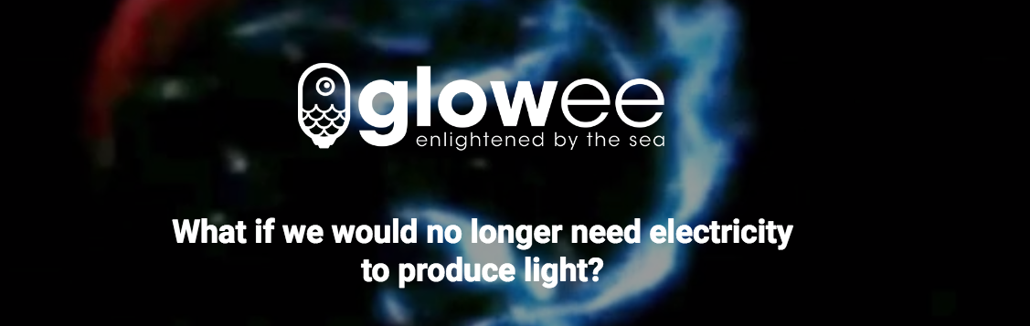 Glowee: Making Bioluminescent Signs