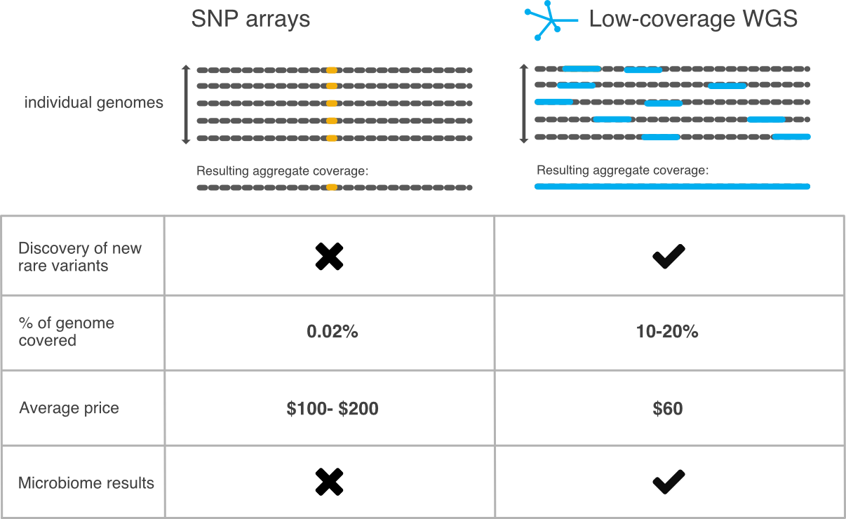 Gencove's sequencing methodology
