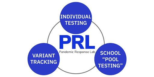 PRL diagram showing individual testing, variant tracking, and school pool testing